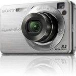 Sony Cyber-Shot DSC-W130 (Silver)