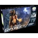PNY GeForce 6200 256Mo (AGP)