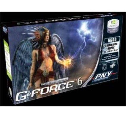 PNY GeForce 6200 256Mo (AGP)