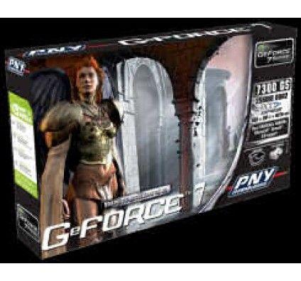 PNY GeForce 7300 GS 256Mo