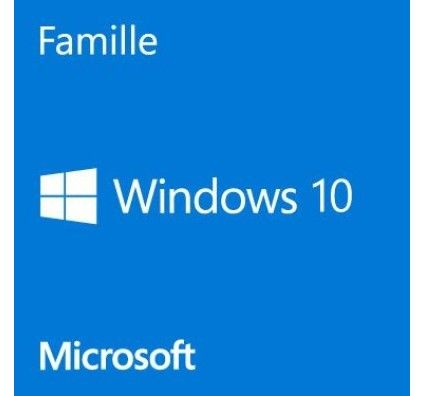 Microsoft Windows 10 Famille 32/64 bits - Version clé USB - HAJ-00059