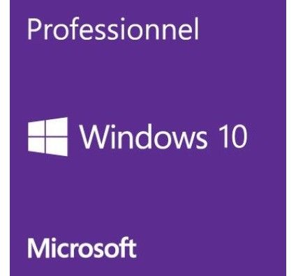 Microsoft Windows 10 Professionnel 32/64 bits - Version clé USB - HAV-00123