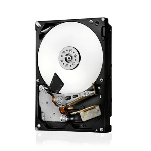 Hitachi Deskstar NAS 6 To SATA 6Gb/s (0F26900)
