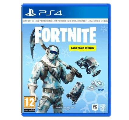 Fortnite - Pack Froid Éternel (PlayStation 4)