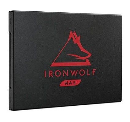 Seagate SSD IronWolf 125 500 Go